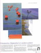 Bøk, Østlandsposten 2013