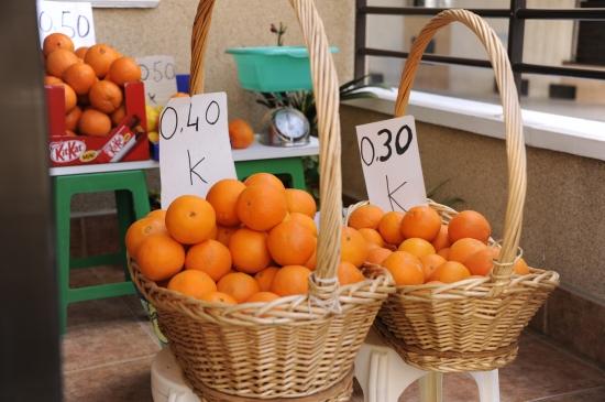 guardamar appelsiner
