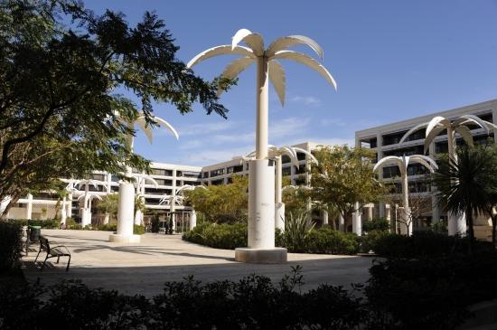 guardamar palmeparken